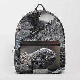 Three marine iguanas hanging out together Backpack
