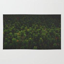 Mountain pine Rug