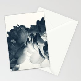 Blue Paeonia #7 Stationery Cards