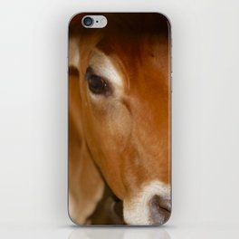 MOOdy Cow iPhone Skin