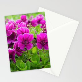 Beauty purple flowers Rhododendron camtschaticum Stationery Cards