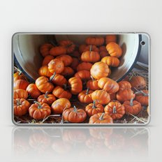 Mini Pumpkins Laptop & iPad Skin