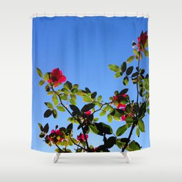 Rose for the Sky Shower Curtain