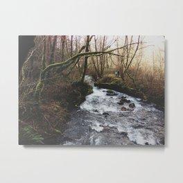 Couple Walking By Stream Metal Print