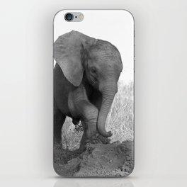 Nkala Orphan Collection (3-10) iPhone Skin