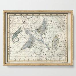 Constellations Lacerta, Cygnus, Lyra Celestial Atlas Plate 11 - Alexander Jamieson Serving Tray