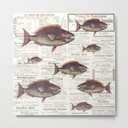 Fishing News Metal Print