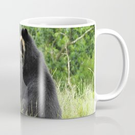 Sun bears Coffee Mug