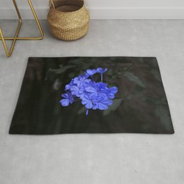 Intensely Blue Flowers Rug