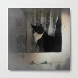 One Cat in the window Metal Print