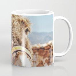 Donkey photo Coffee Mug