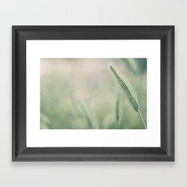 Espiga Framed Art Print