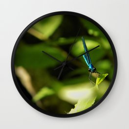 Jewel Wall Clock
