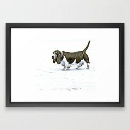 Basset Hound Framed Art Print