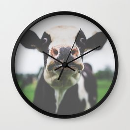 Funny Cow Photography print Wall Clock