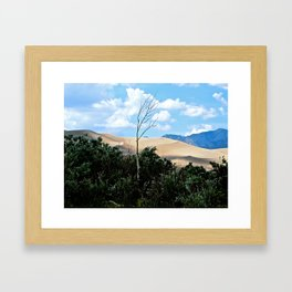 Sole tree on the Dunes Framed Art Print