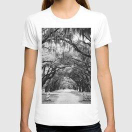 Spanish Moss on Southern Live Oak Trees black and white photograph / black and white art photography T-shirt