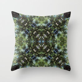 Reflection Kaleidoscope Throw Pillow