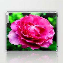 Queen Elizabeth Rose Laptop & iPad Skin