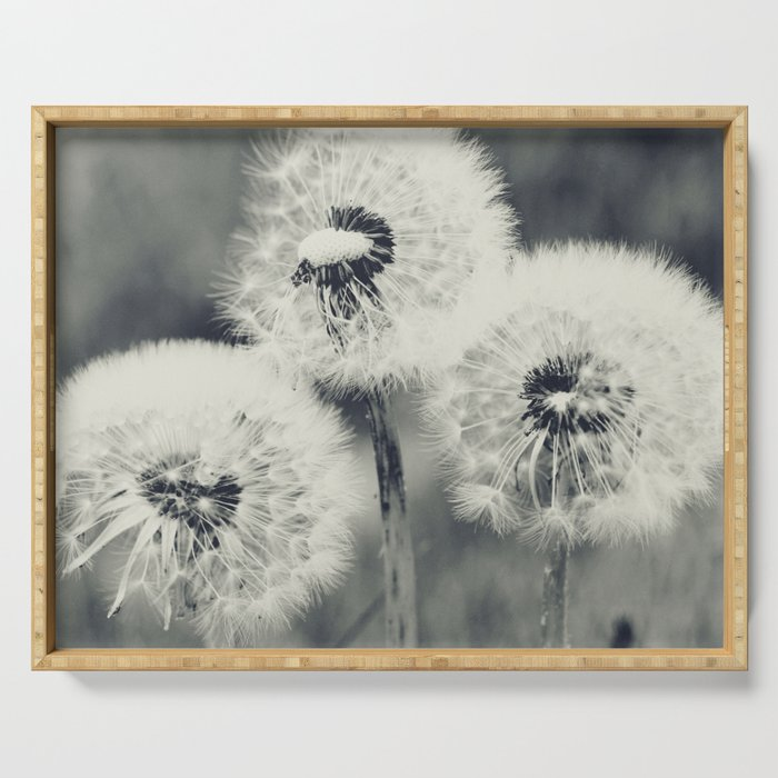 Dandelions Serving Tray