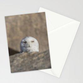 Peekaboo Snowy Owl Stationery Cards
