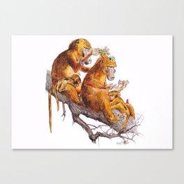 monkeys habits Canvas Print