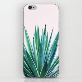Agave Love #society6 #decor #buyart iPhone Skin