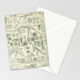 Fossil Chart Stationery Cards