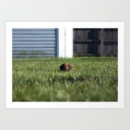 Pupper Vibes Art Print