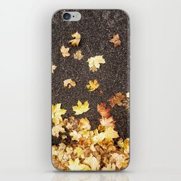 Gold yellow maple leaves autumn asphalt road iPhone Skin