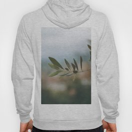 The Majestic Olive Tree Branch Hoody