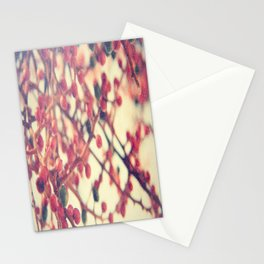 Snow-kissed Stationery Cards