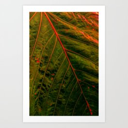 #01 Art Print