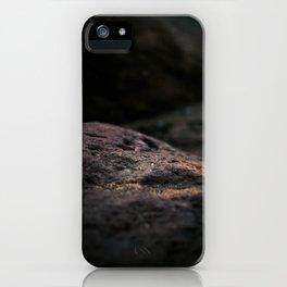Alpha delta iPhone Case