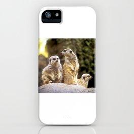 Act Natural Meerkats iPhone Case