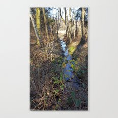 Enchanted Stream Canvas Print