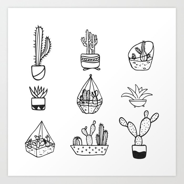 Cactus minimalist. Cacti collection black and