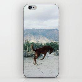 Bucking in Baja iPhone Skin