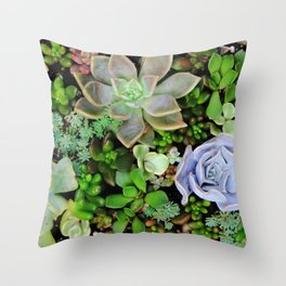 Collection of Succulents Throw Pillow