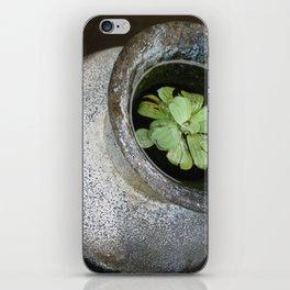 Zen Pond iPhone Skin