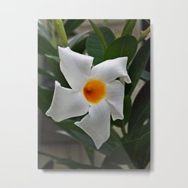 ATTRACTOR Metal Print