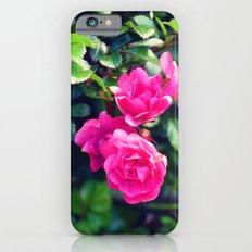 Rose Garden Slim Case iPhone 6s