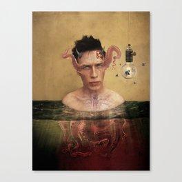 kephalópoda Canvas Print