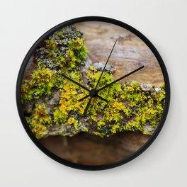 Moss on a Fallen Tree Wall Clock