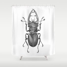 Beetle 05 Shower Curtain