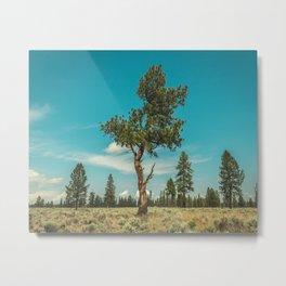 Lone Metal Print