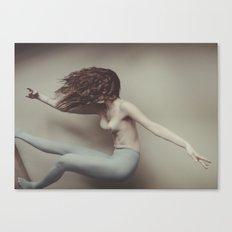 _DSC4886 Canvas Print