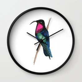 Purple-throated Carib Wall Clock