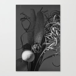 Echopraxia Canvas Print