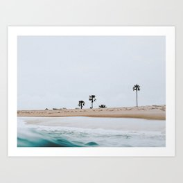 newport beach, california Art Print